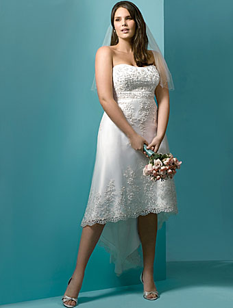 Short Plus Size white wedding Dresses