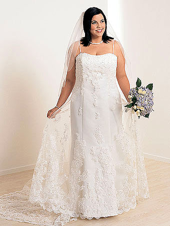 plus size wedding dresses with veil