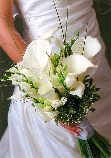 Top Ten Of Most Popular Wedding Flowers Sang Maestro