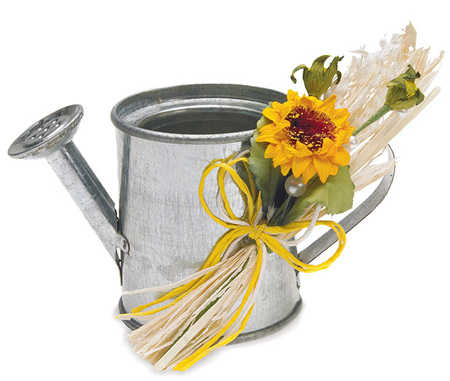mini watering can for garden wedding favor