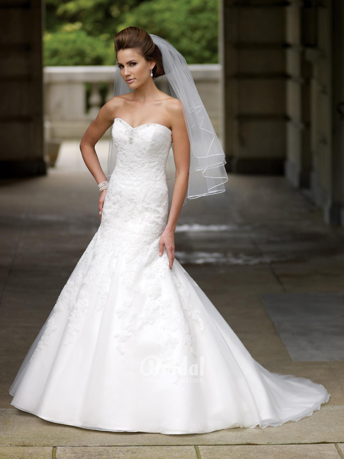 organza a-line dropped waist wedding dress with lace appliques