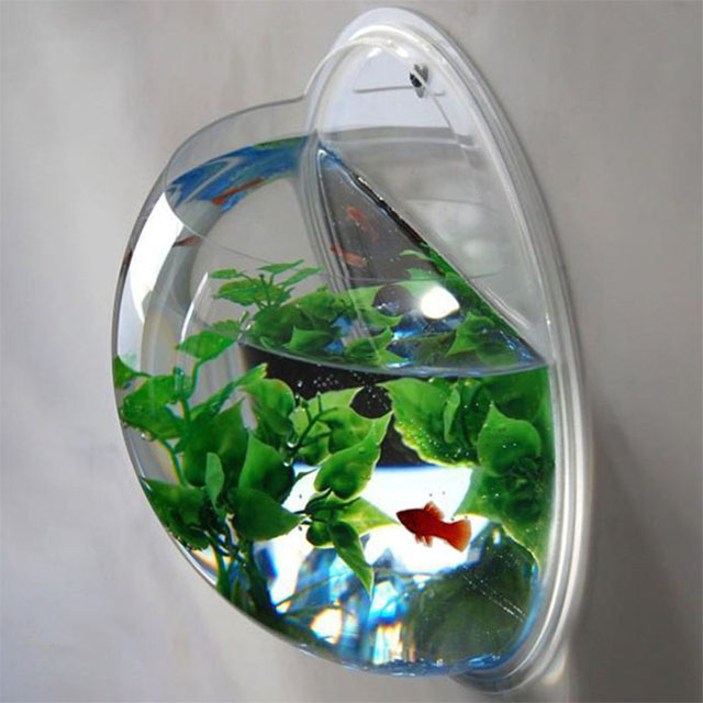 mounted fish bowl