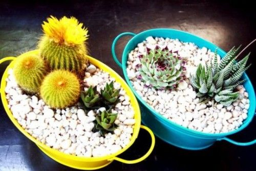 Wedding Centerpiece Idea With Bright Painted Buckets With Pebbles And Cacti And Succulents