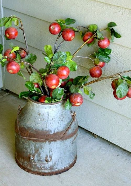 Fall Wedding Décor Idea With A Vintage Metal Bucket With Apple Branches